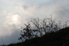 太阳阴影 图库摄影