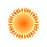 太阳 免版税图库摄影