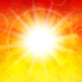 太阳 库存照片