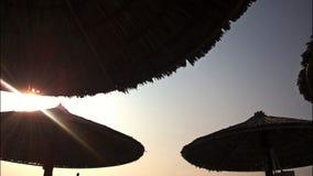 太阳unbrellas 图库摄影