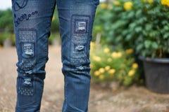 夫人佩带的蓝色困厄的牛仔裤,被剥去的牛仔裤,被撕毁 库存照片