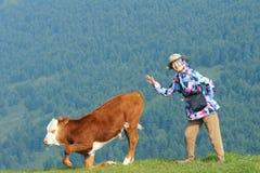 夫人和小牛 免版税库存图片
