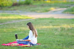 夫人坐在公园和谈话在Skype通过有耳机的一台膝上型计算机 库存图片