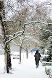 夫人拿着一把蓝色伞,当走在城市边路时的一场冬天雪风暴 库存图片