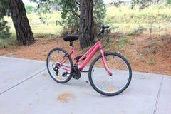 夫人桃红色自行车 免版税库存照片