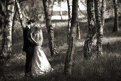 夫妇亲吻的婚礼 免版税库存照片