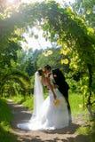 夫妇亲吻的婚礼 免版税图库摄影