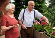 夫妇从事园艺的前辈 免版税库存照片