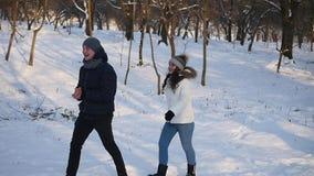 夫妇停放走的年轻人 时数横向季节冬天 走在冬天公园和微笑的爱恋的夫妇 慢的行动 股票录像