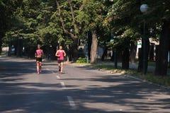夫妇健身跑步的锻炼健康概念 免版税图库摄影