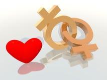 夫妇同性恋者爱 库存照片