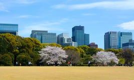 夫妇和家庭在一个公园会集在东京` s故宫东部庭院里享用室外 免版税图库摄影