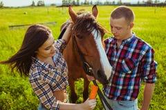 年轻夫妇哺养的马 免版税库存图片