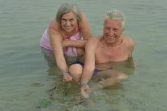 夫妇哺养的鱼 库存照片