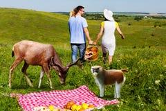 年轻夫妇回家的arter野餐 免版税库存图片