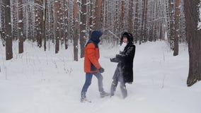 夫妇在公园在冬天投掷雪在慢动作 股票视频