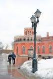 夫妇在冬天公园走 免版税库存图片