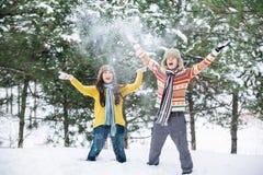 夫妇在冬天公园 免版税库存照片