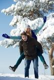 年轻夫妇在冬天 库存图片