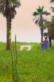 夫妇在树后一起走在海滩附近 免版税库存图片