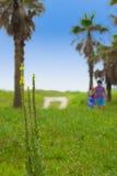 夫妇在树后一起走在海滩附近 库存照片