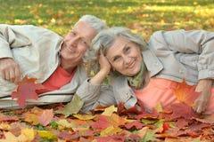 夫妇在秋天公园 图库摄影