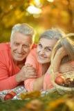 夫妇在秋天公园 免版税库存图片