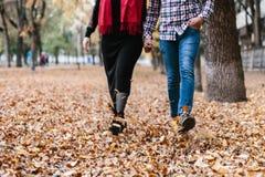 夫妇在秋天天走 库存照片