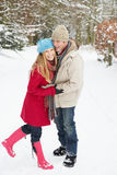 夫妇多雪的走的森林地 免版税库存照片