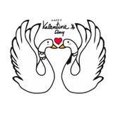 夫妇天鹅恋人亲吻的动画片例证 免版税库存照片