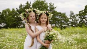 夫妇女孩笑朋友拥抱花草甸 影视素材