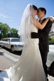 夫妇愉快的新婚佳偶 免版税库存照片