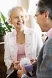 夫妇成熟存在 免版税库存照片