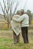 夫妇成熟走 免版税库存图片