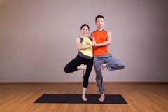 夫妇执行双重树瑜伽伙伴姿势 免版税库存图片