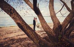 夫妇拥抱愉快 图库摄影