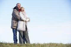 夫妇拥抱的公园前辈 库存照片