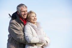 夫妇拥抱的公园前辈 库存图片