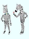 夫妇斑马动画片 库存照片