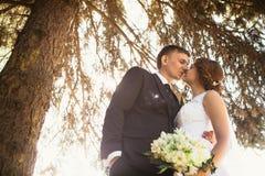 夫妇新娘和新郎的画象在公园背景 免版税图库摄影