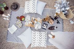 夫妇晚餐的野餐设置 库存图片