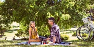 夫妇有野餐在公园 图库摄影