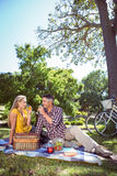 夫妇有野餐在公园 库存图片