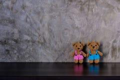 夫妇棕色玩偶负担举行手和身分 免版税库存照片