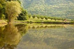 夫妇森林湖爱岸 免版税库存照片