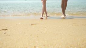 夫妇沿海滩走在一清楚的好日子 他们举行手和亲吻 男人和妇女走的脚 股票录像