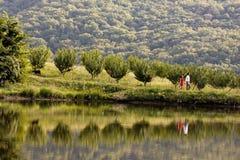 年轻夫妇沿湖岸走 库存照片