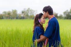 夫妇泰国农夫 免版税库存照片