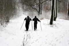 夫妇滑雪冬天 库存照片