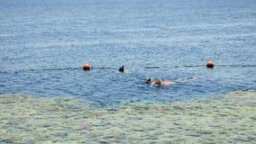 夫妇潜航在热带海手段 影视素材